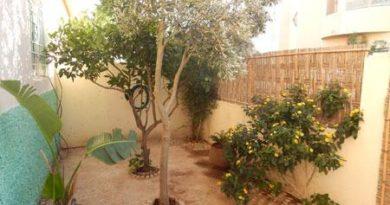 Villa avec un petit jardin a Essaouira Eljadida